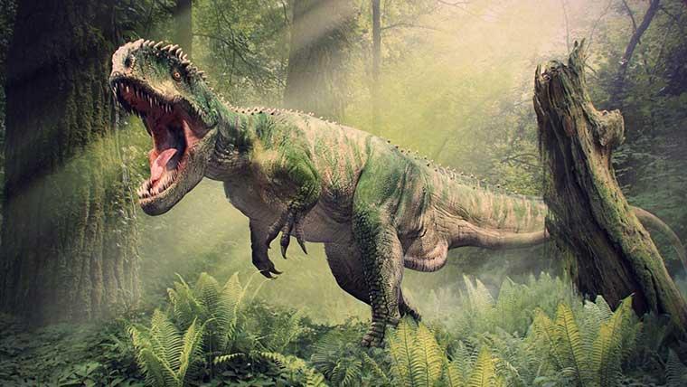 ギガノトサウルスの化石や学名の意味について解説!体長や体重などの大きさは?