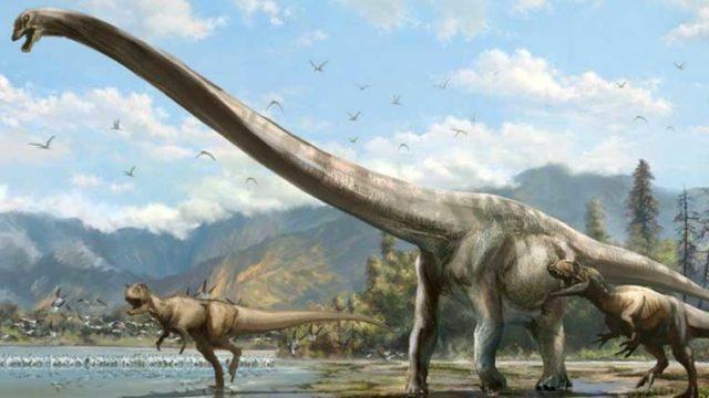 クリオロフォサウルスの体長や体重などの大きさは?学名の意味や特徴 ...