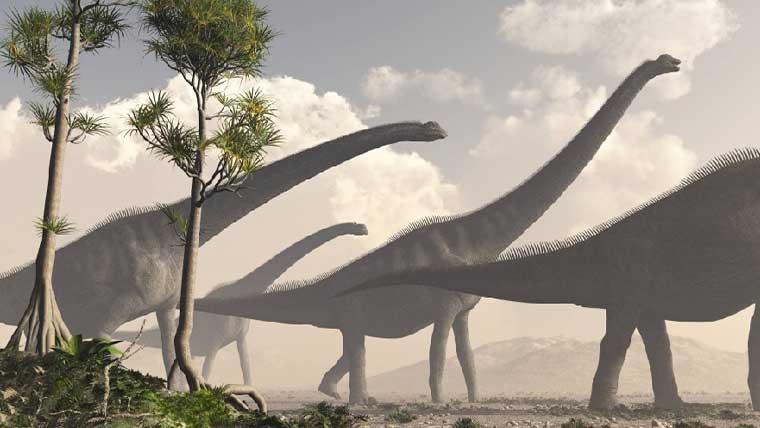 一番大きい最大の恐竜ランキングTOP10!巨大な恐竜の大きさを紹介 ...